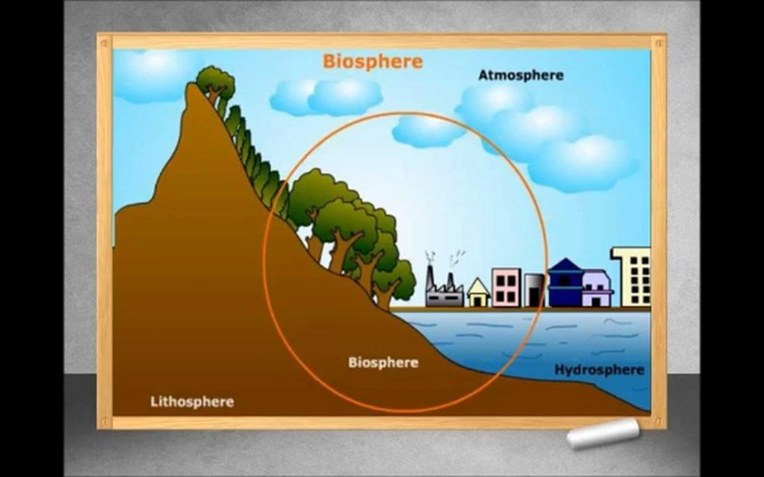 diagram of biosphere